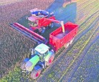 Afgrødevalg for fremtiden