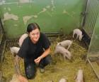 Ung svineproducent investerer inybyggeri