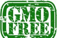 Mælk uden GMO-fodring