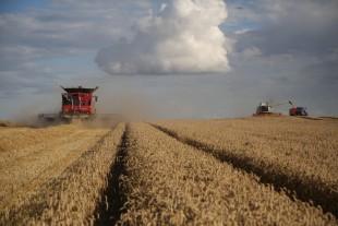 Find ledig høstkapacitet nær dig (Gratis...