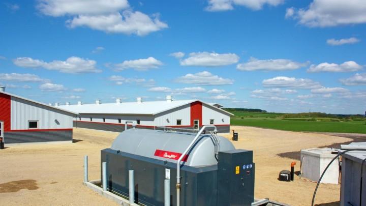 Danmark har let ved at nå målet for reduktion af ammoniakemissioner
