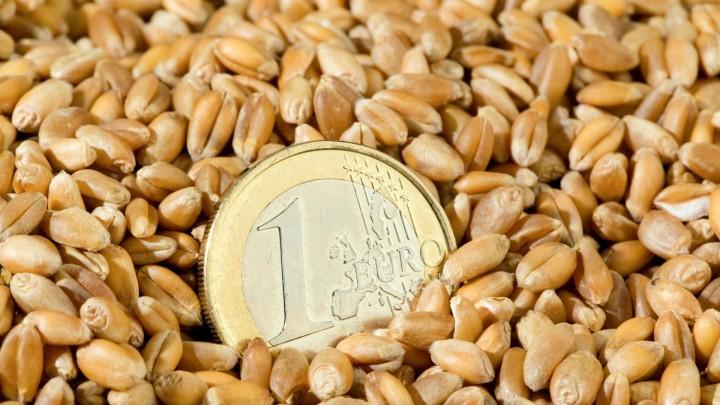 Kornprisen snakket ned i høst