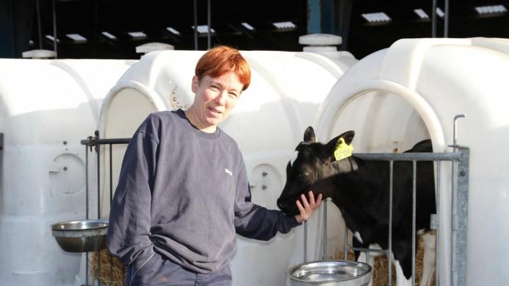 Kalvene skal have kvalitetsmælk