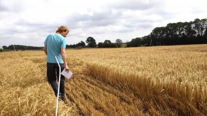 Udpint mark giver konkret viden om fosfor