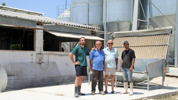 Svineproduktion båret af turismen